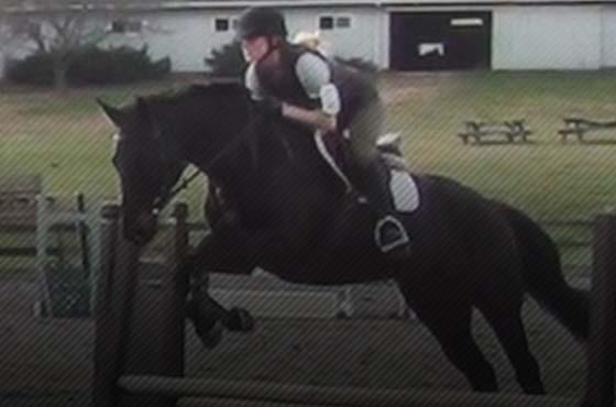 PIXIO camera automatique pour l'équitation et le saut d'obstacles