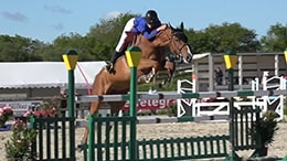 PIXIO sample footage: show jumping