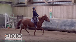 PIXIO auto follow camera EQUESTRIAN SPORTS