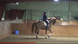 Suzie Halle Dressage USA filmed by PIXIO