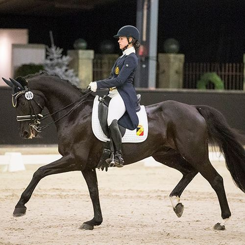 <p>International dressage amazone, Belgium</p>